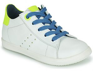 Xαμηλά Sneakers Little Mary DUSTIN