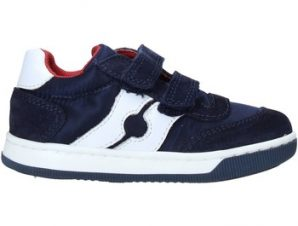 Sneakers Falcotto 2014666 01