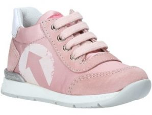 Xαμηλά Sneakers Falcotto 2014939 01