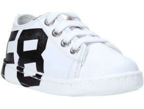 Xαμηλά Sneakers Falcotto 2014671 01
