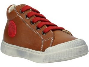 Xαμηλά Sneakers Falcotto 2014603 01