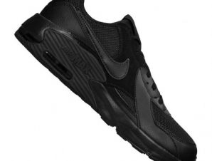 Nike Air Max Excee GS Jr CD6894-005 shoes